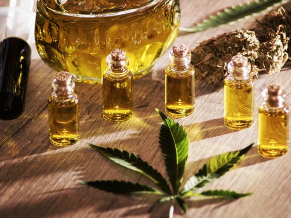 Jak działa olej cbd według najpopularniejszych blogów o konopiach